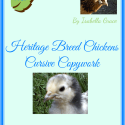 Chicken Breeds Handwriting Copywork Pages