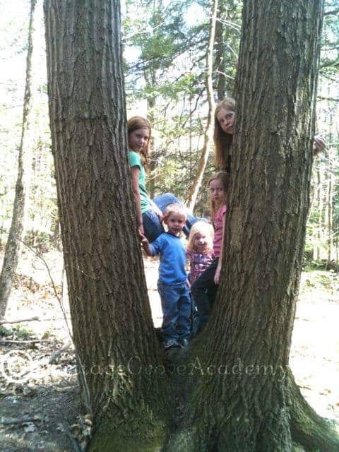 Kids in a Tree on a Hike