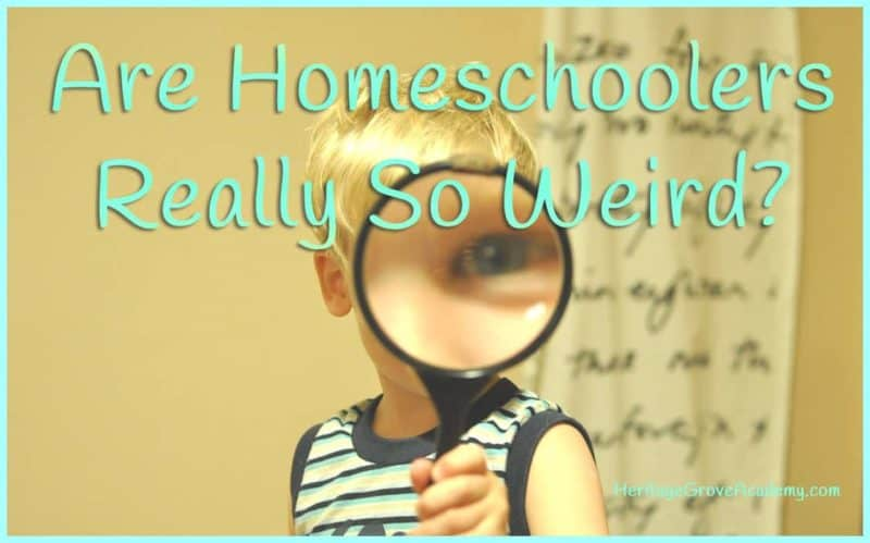Why are homeschoolers considered weird?