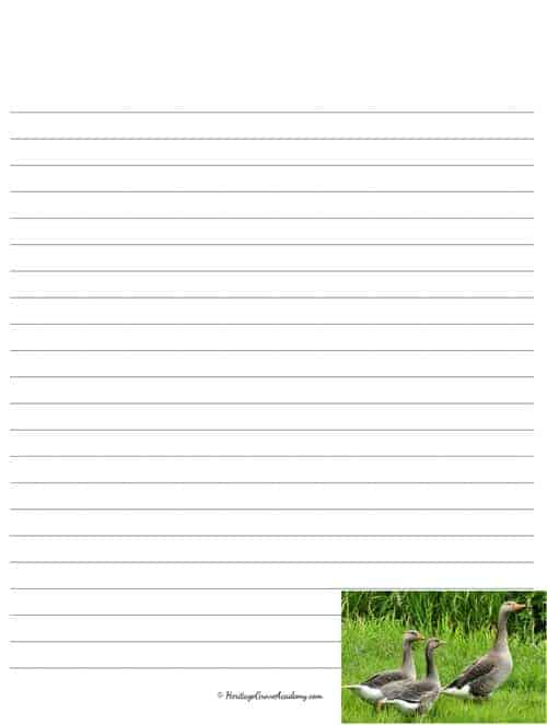 Waterfowl Stationery Pages to Print