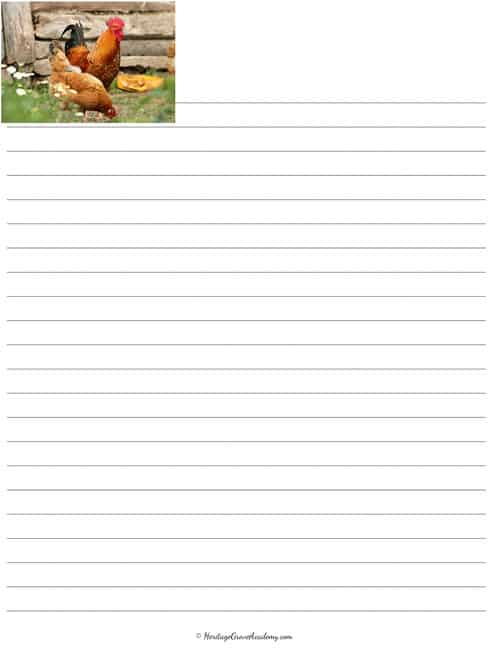 Chicken Writing Pages Homeschool
