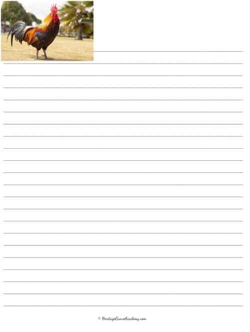 Writing Pages with Chickens, Lined to Print